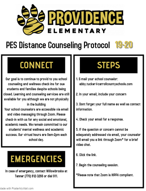 PES Distance Counseling Protocol