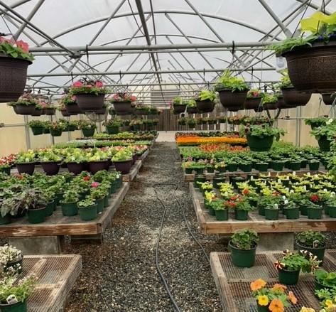 Spring Plant Sales 2021