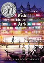 Wish in the Dark