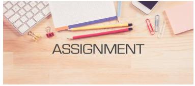 assignments below