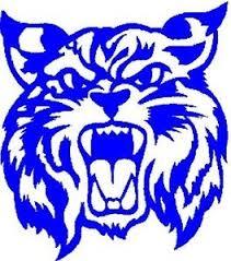 Wildcat Head