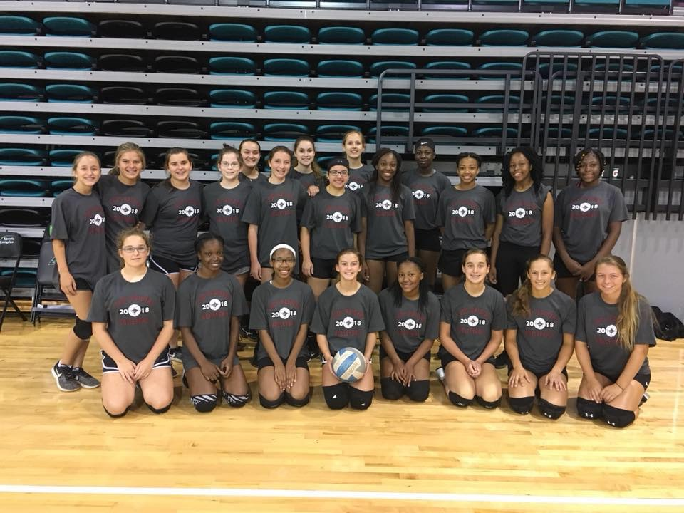 Volleyball Program