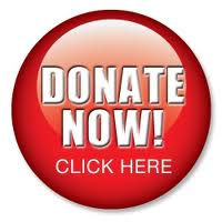 Image of Donate Now Button