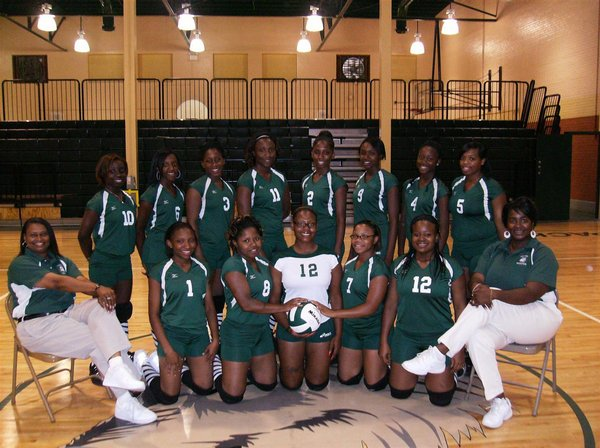 JV Volleyball Team Picture