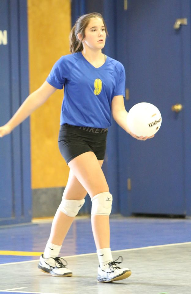 Volleyball Pic