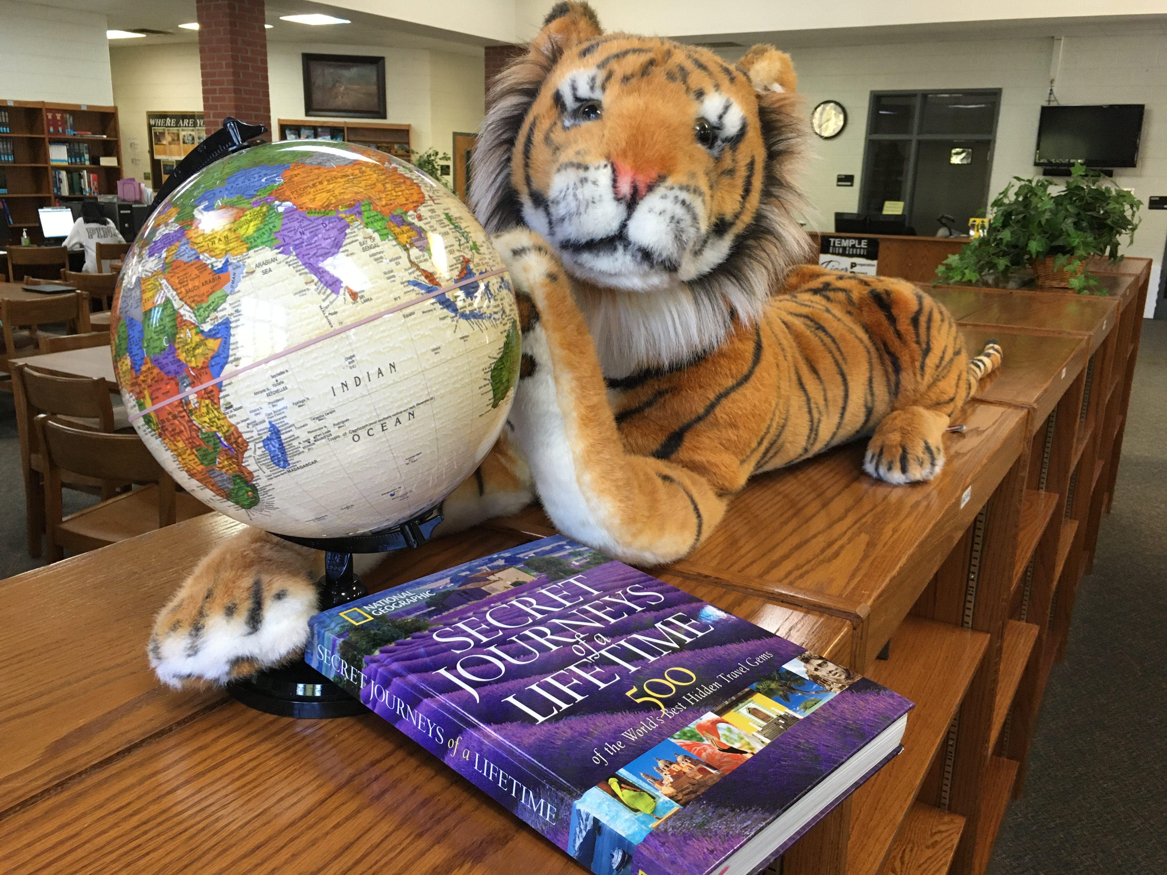 Tiger with globe and book