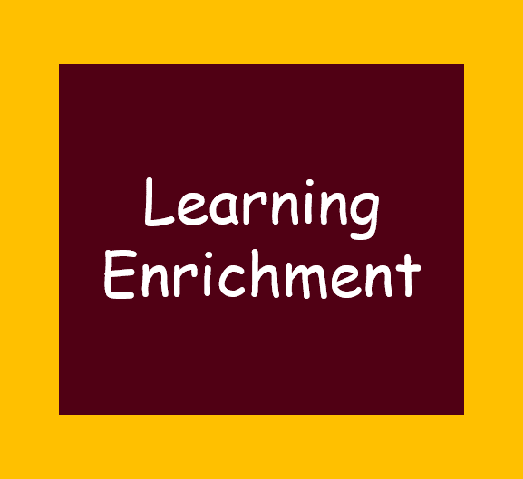 Learning Enrichment