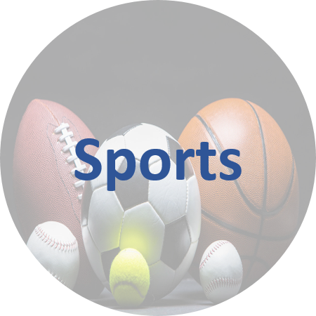 Sports link