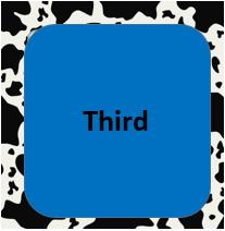 Third Button