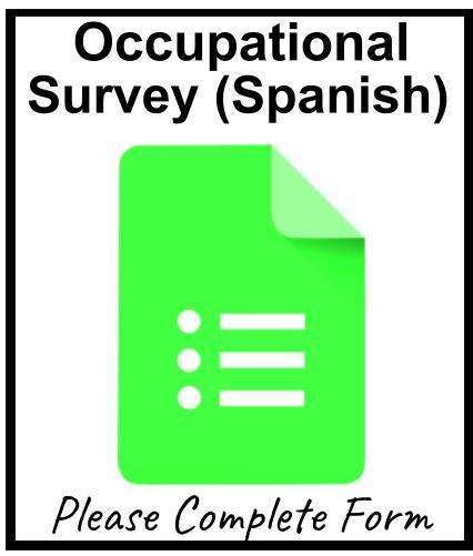 Occupational Survey (Spanish)
