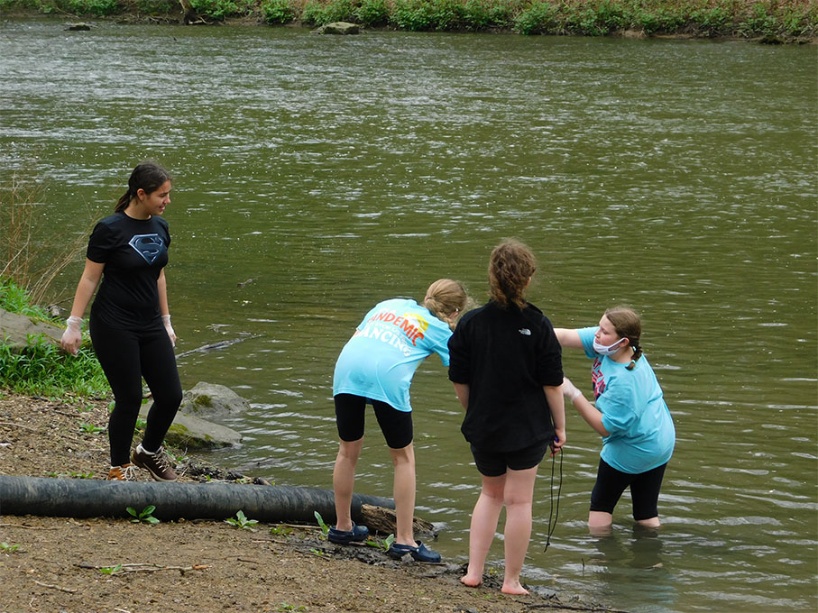 Groups within groups tested close to land and deeper in the water