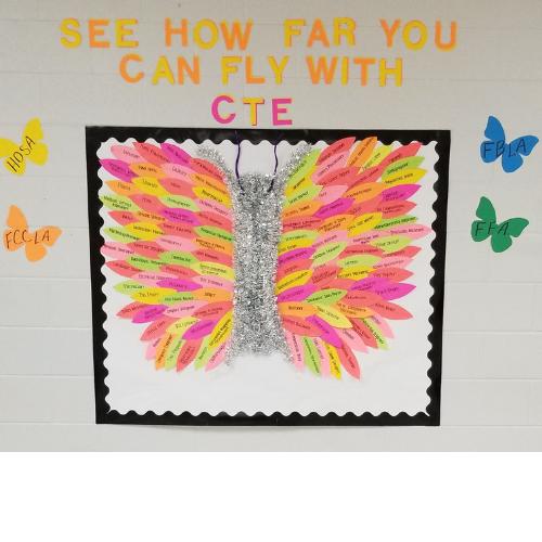cte butterfly