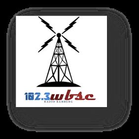 WBSC Icon