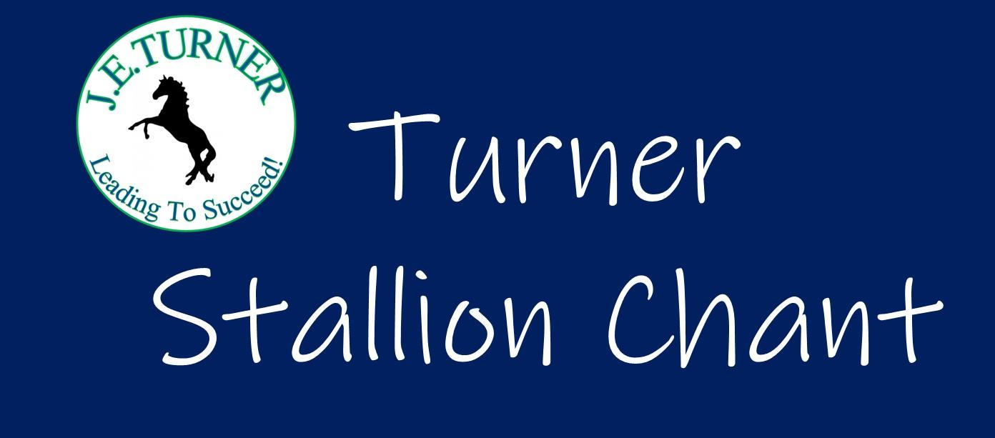 Turner Stallions