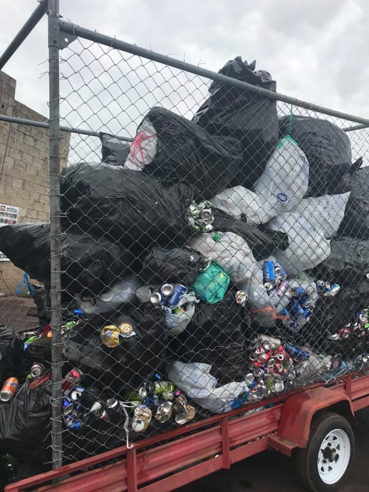 Collected Cans