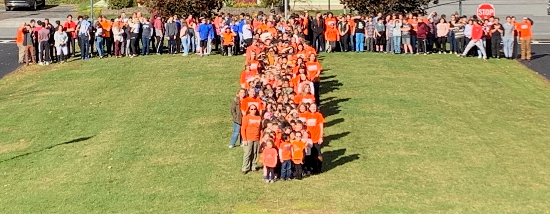 Unity Day T Picture