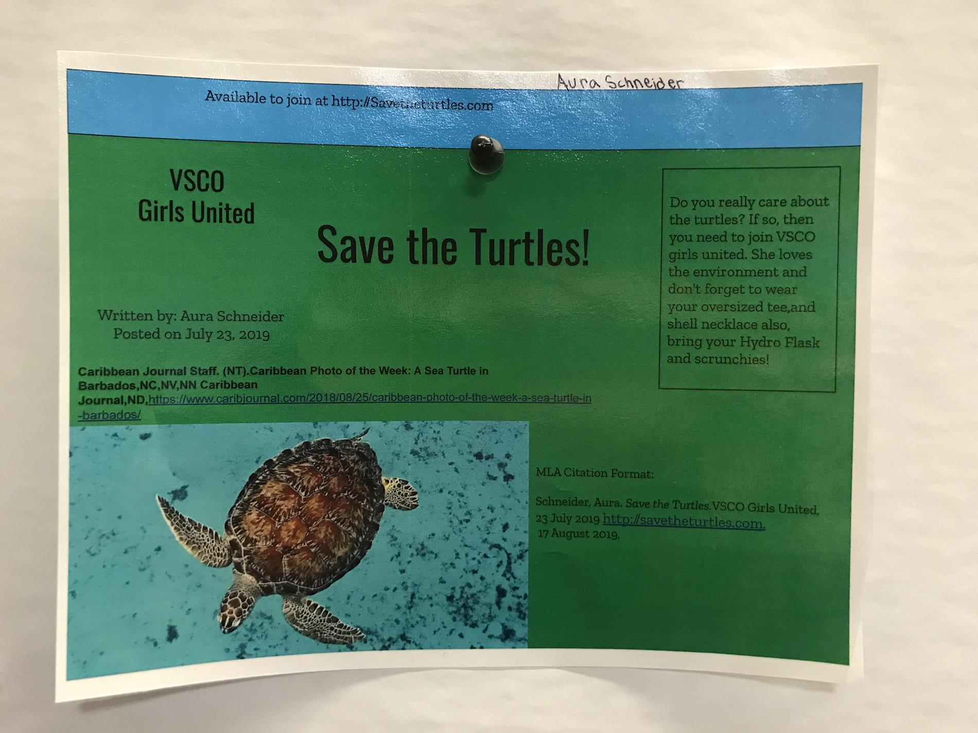 6th Grade Sea Turtle Website Example and Citation