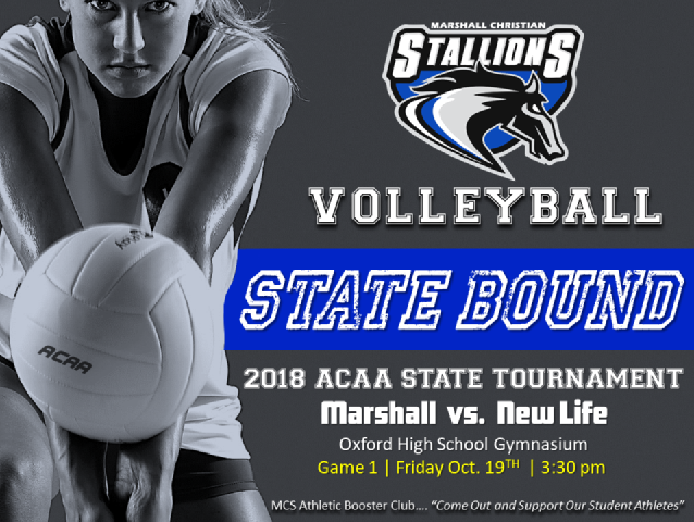 2018 State tournament poster