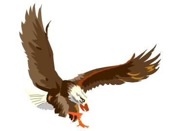 letter head eagle