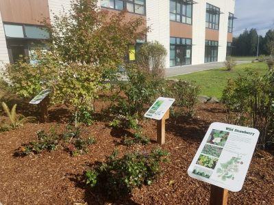 Main Entrance Educational Landscaping