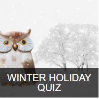 Winter Holiday Quiz