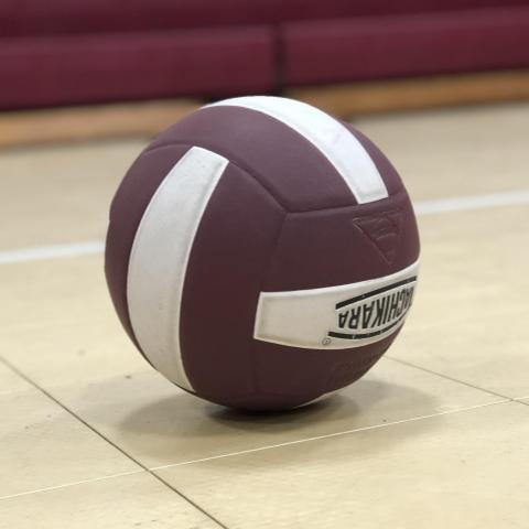 maroon and white volleyball