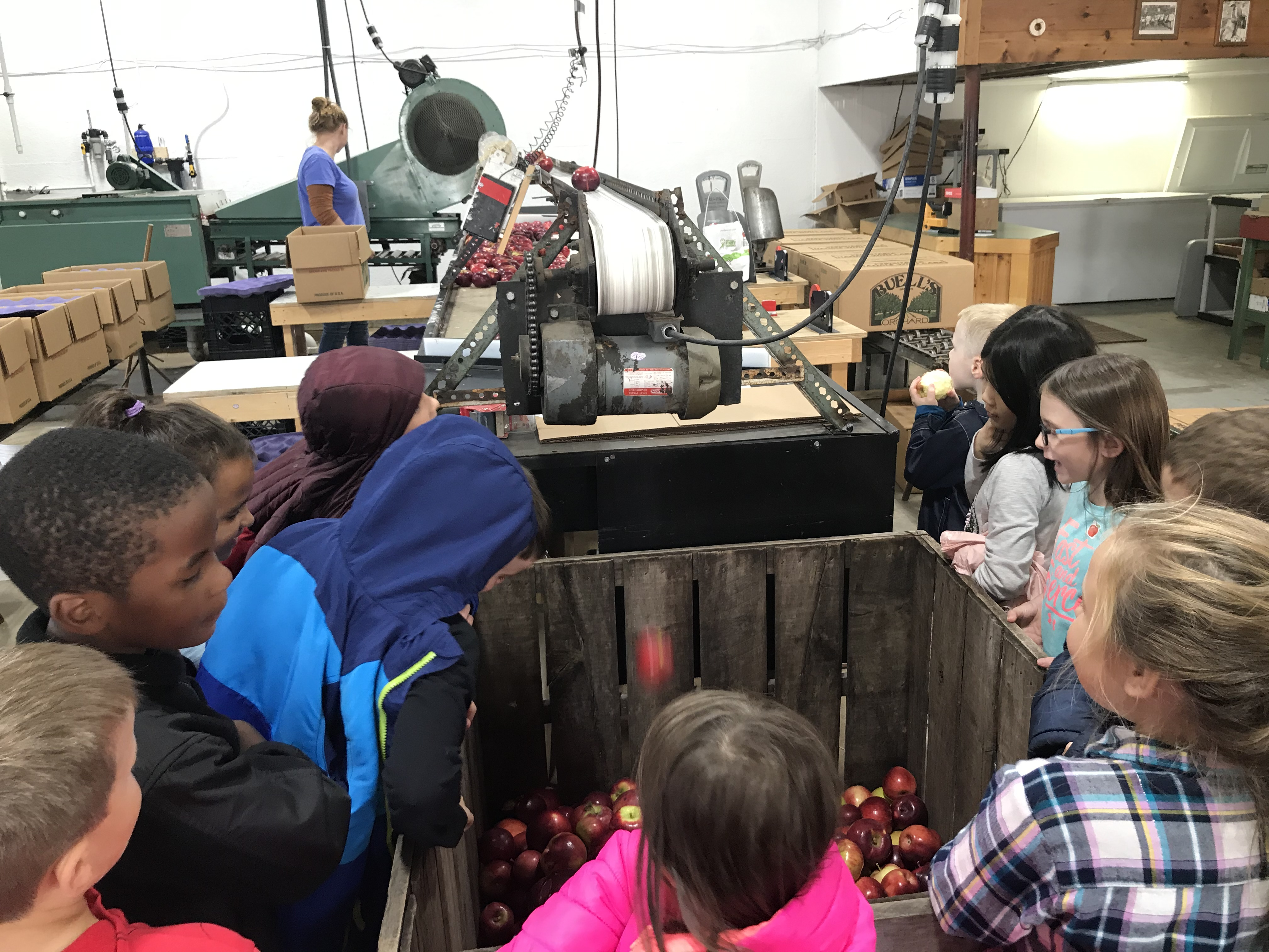 Students watching cider production