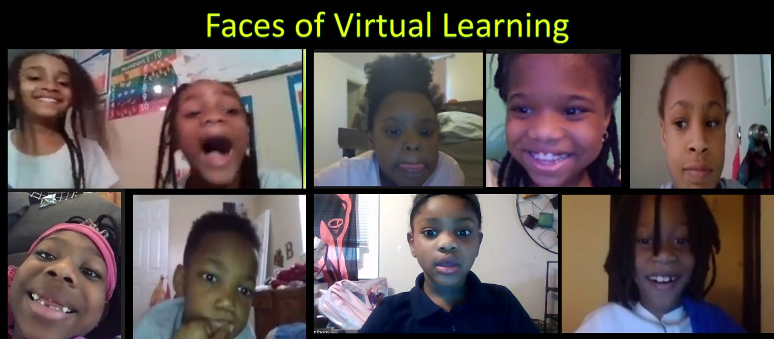 Faces of Virtual Learning