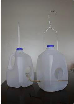 milk jug feeder