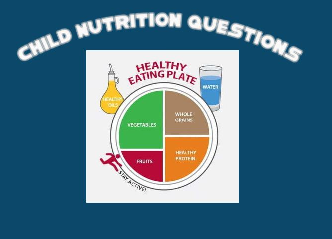 Child Nutrition Survey
