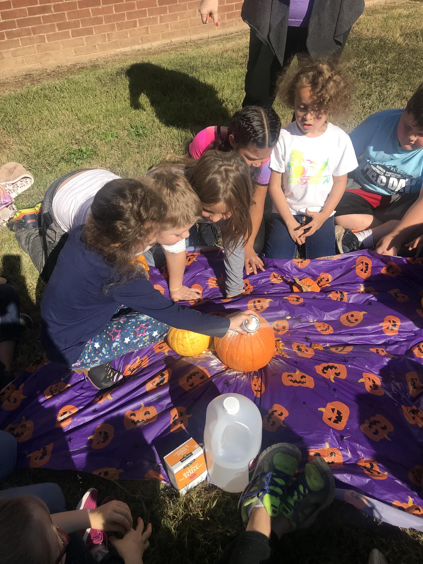 We did a Science Experiment with our pumpkins.