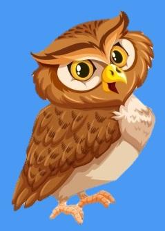 RELC Owl