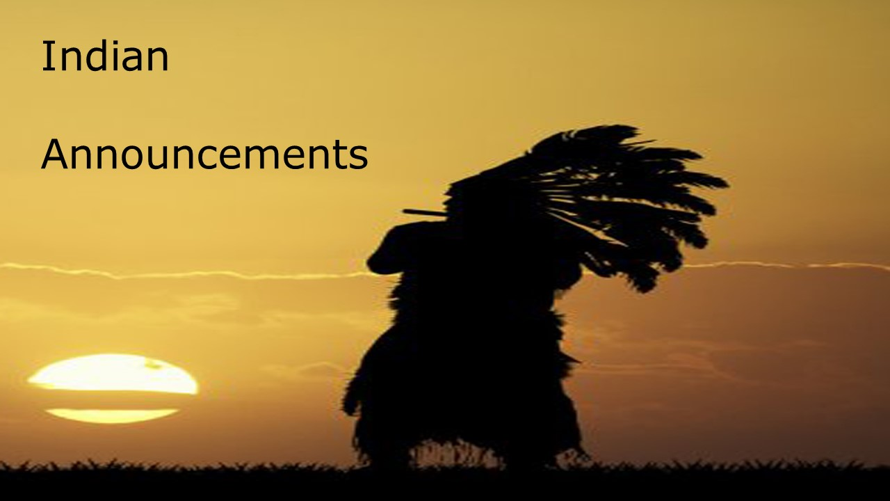 Indian Chief looking at sunset