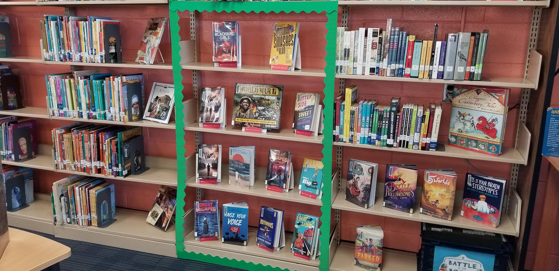 New book display in the Media Center