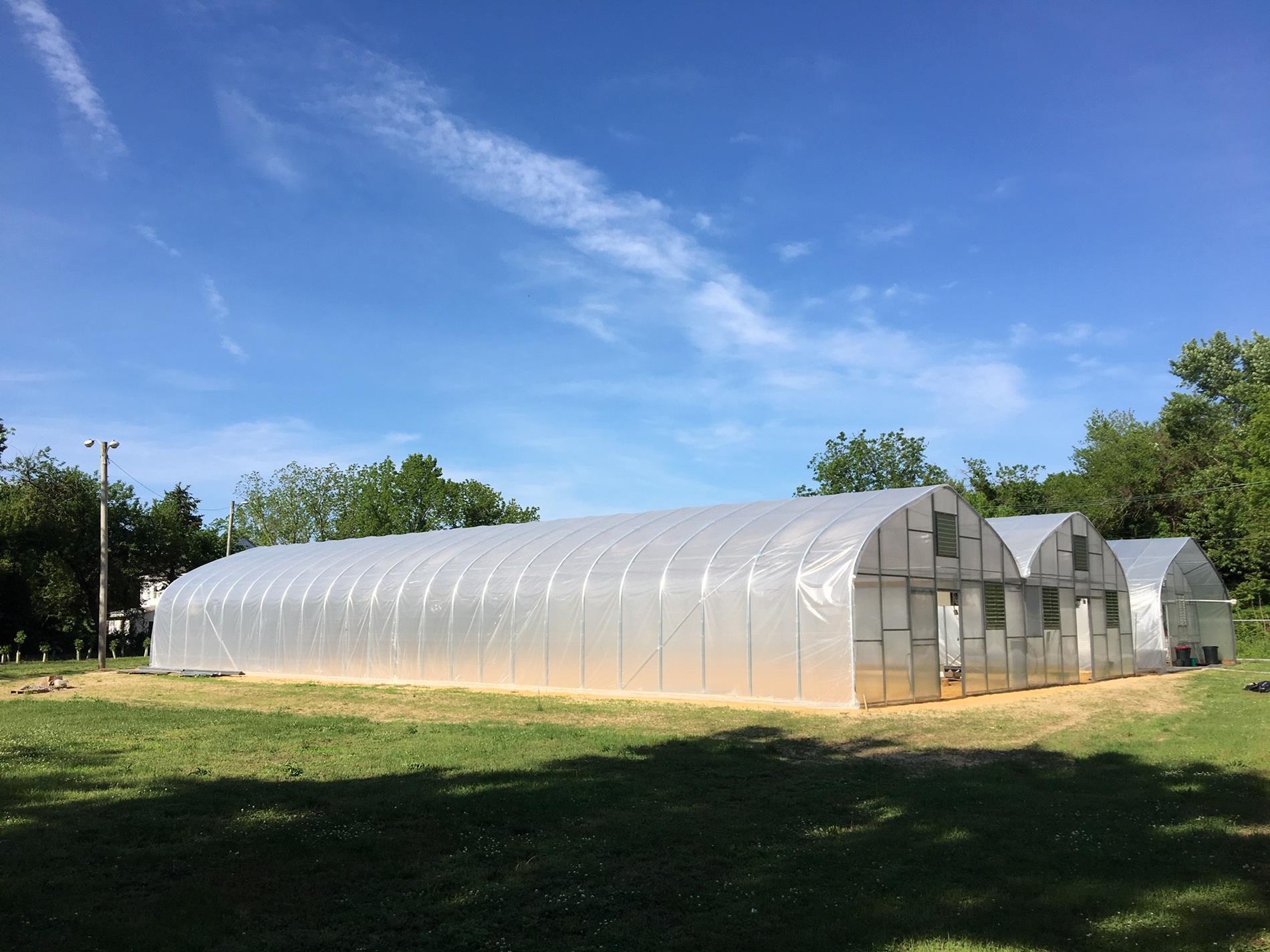 Greenhouses photo
