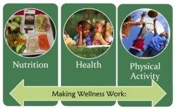 Making Wellness Work