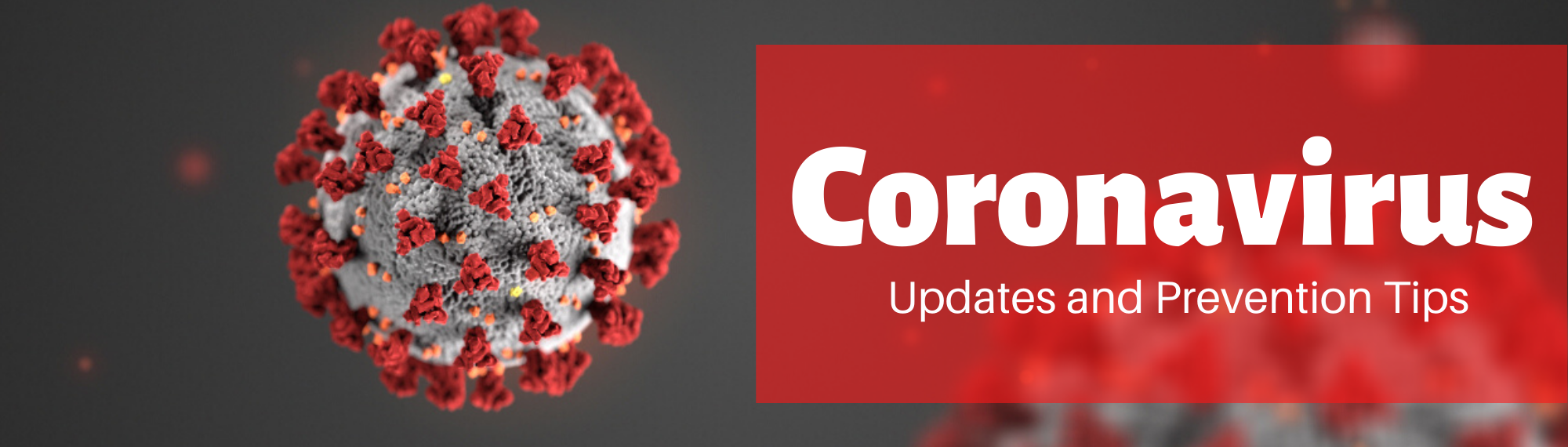 Coronavirus Update and Prevention Tips