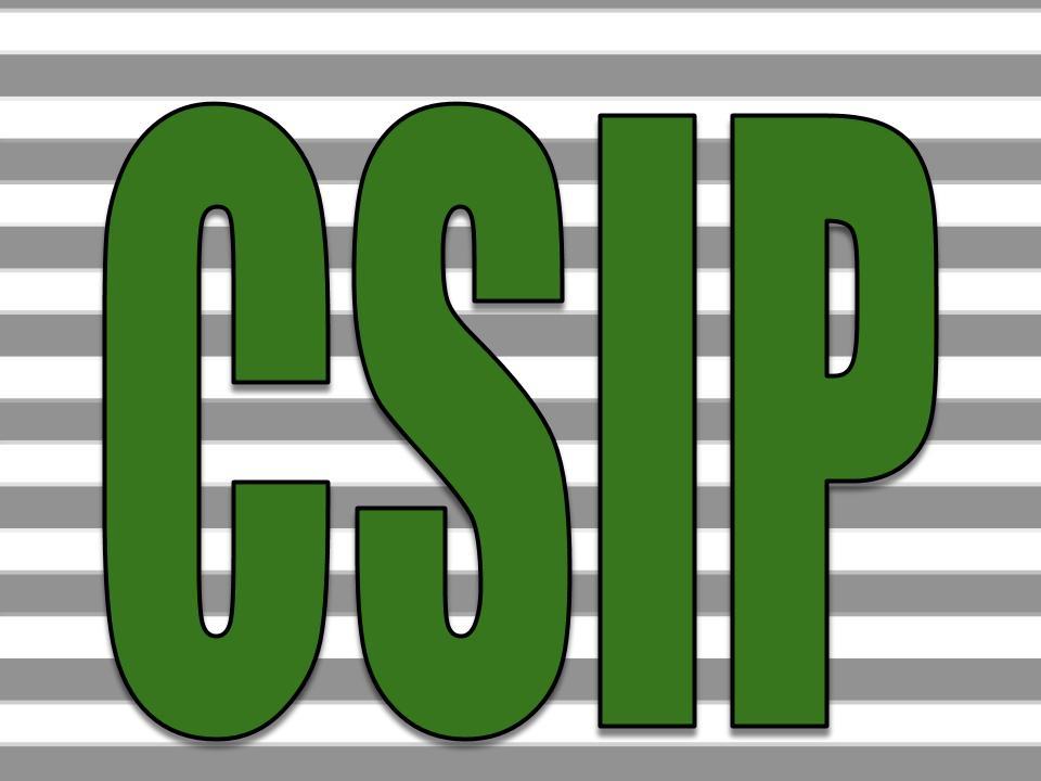 CSIP 2019-2020