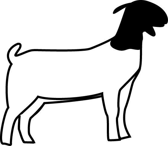 /goatshow