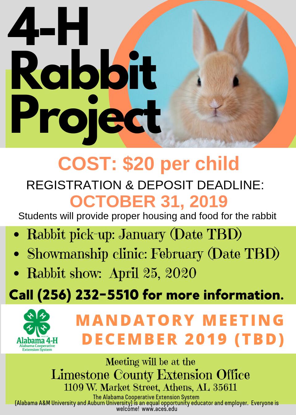4 h Rabbit Project