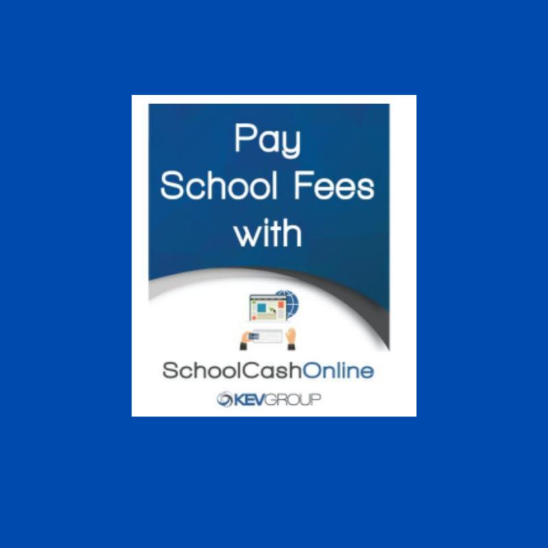 School Case Online