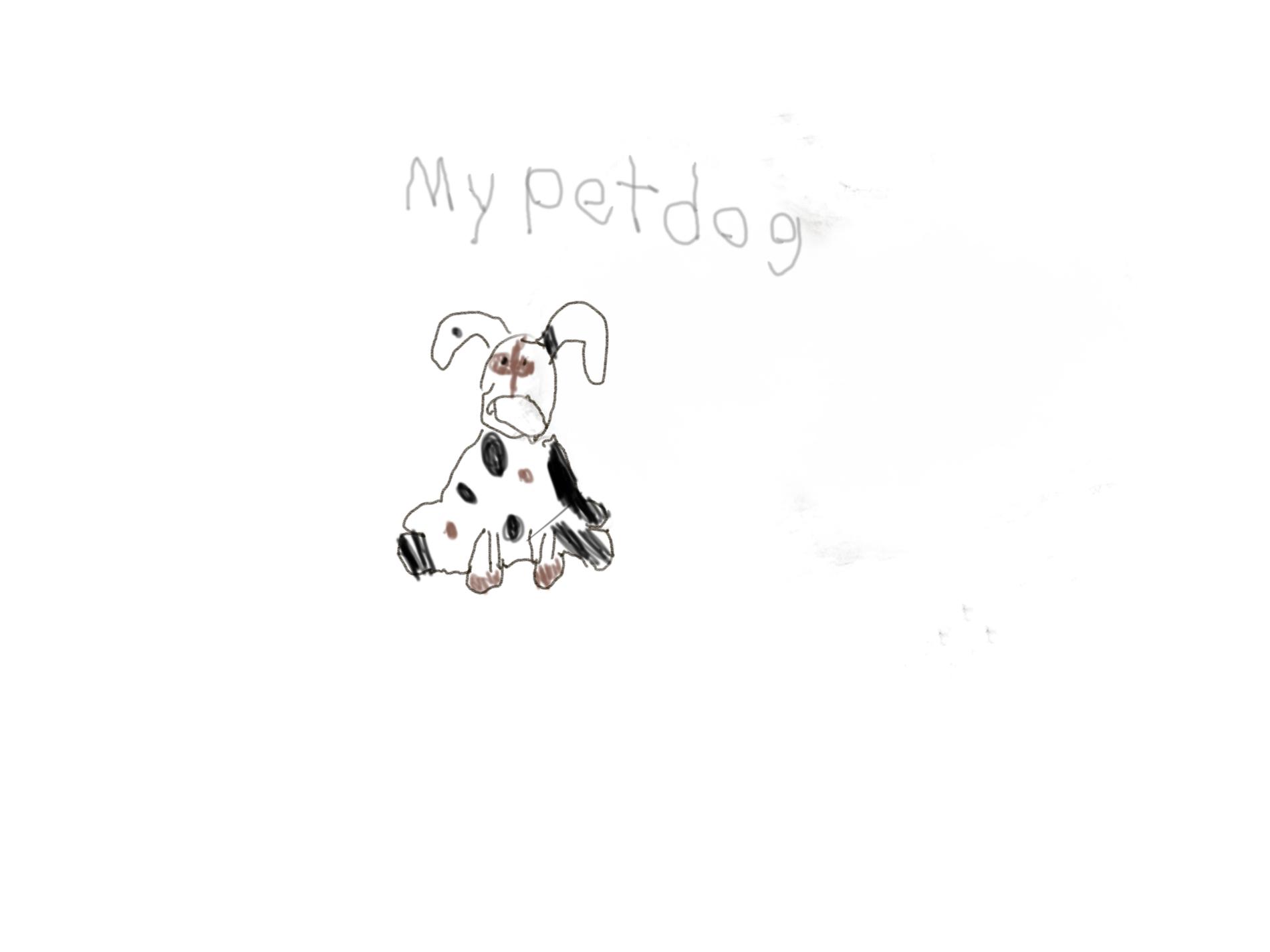 Digital Drawing for WEEK 11 (1st Grade)