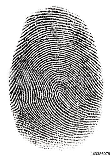 Fingerprinting Image