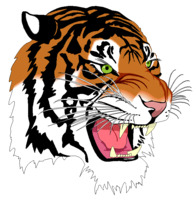 Image of a tiger mascot
