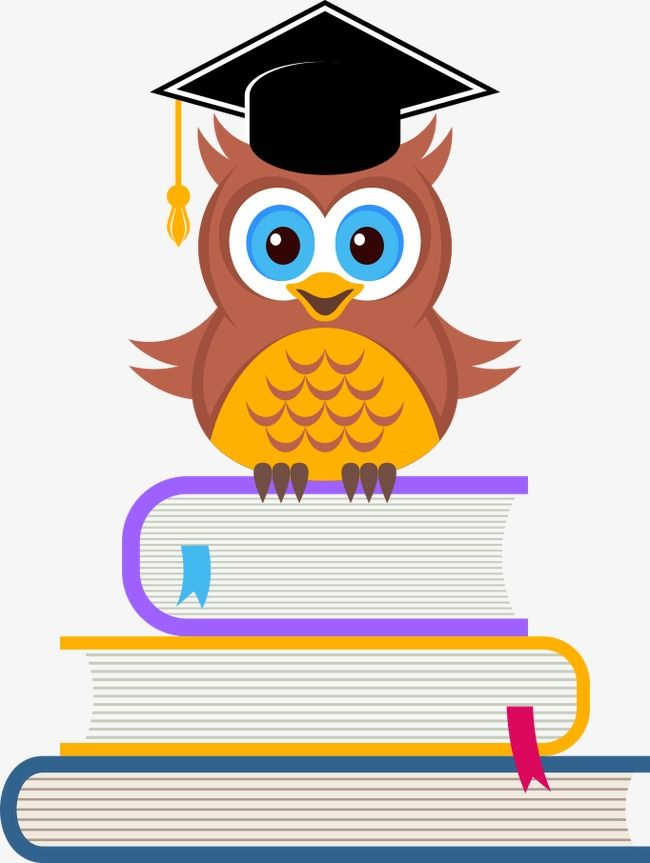 Owl sitting on a stack of books image