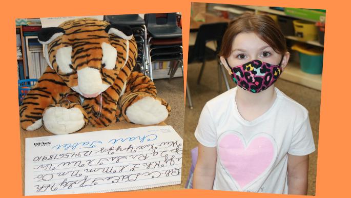 tiger read