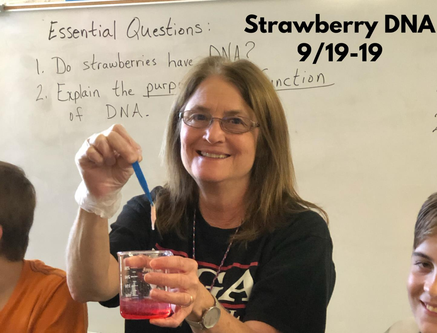 Cook Strawberry DNA