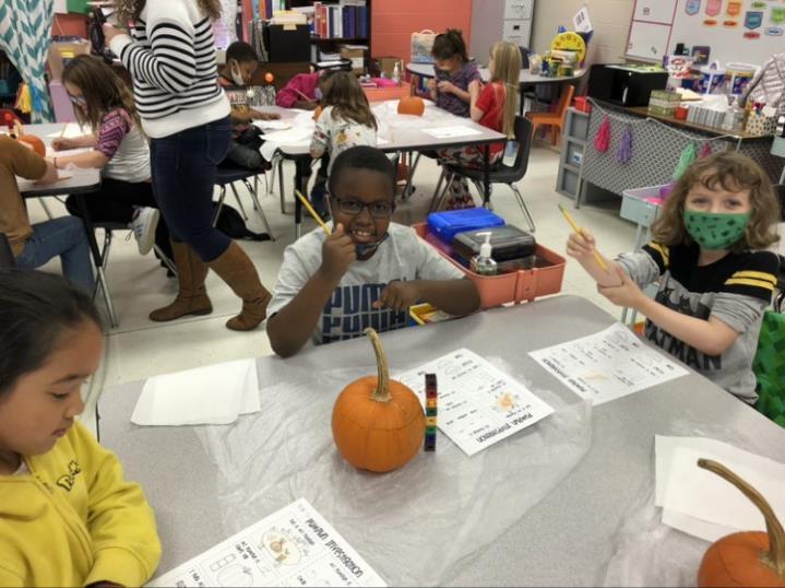 Pumpkin Experiment