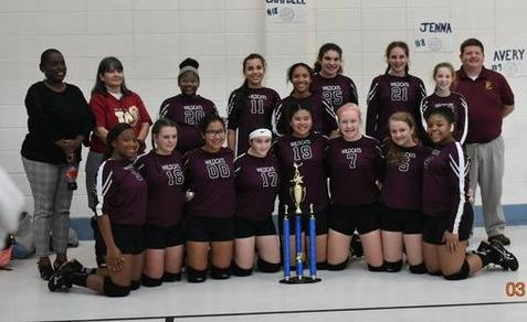 LMS Volleyball Team 2018-2019