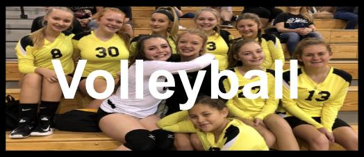 Lady Braves Volleyball